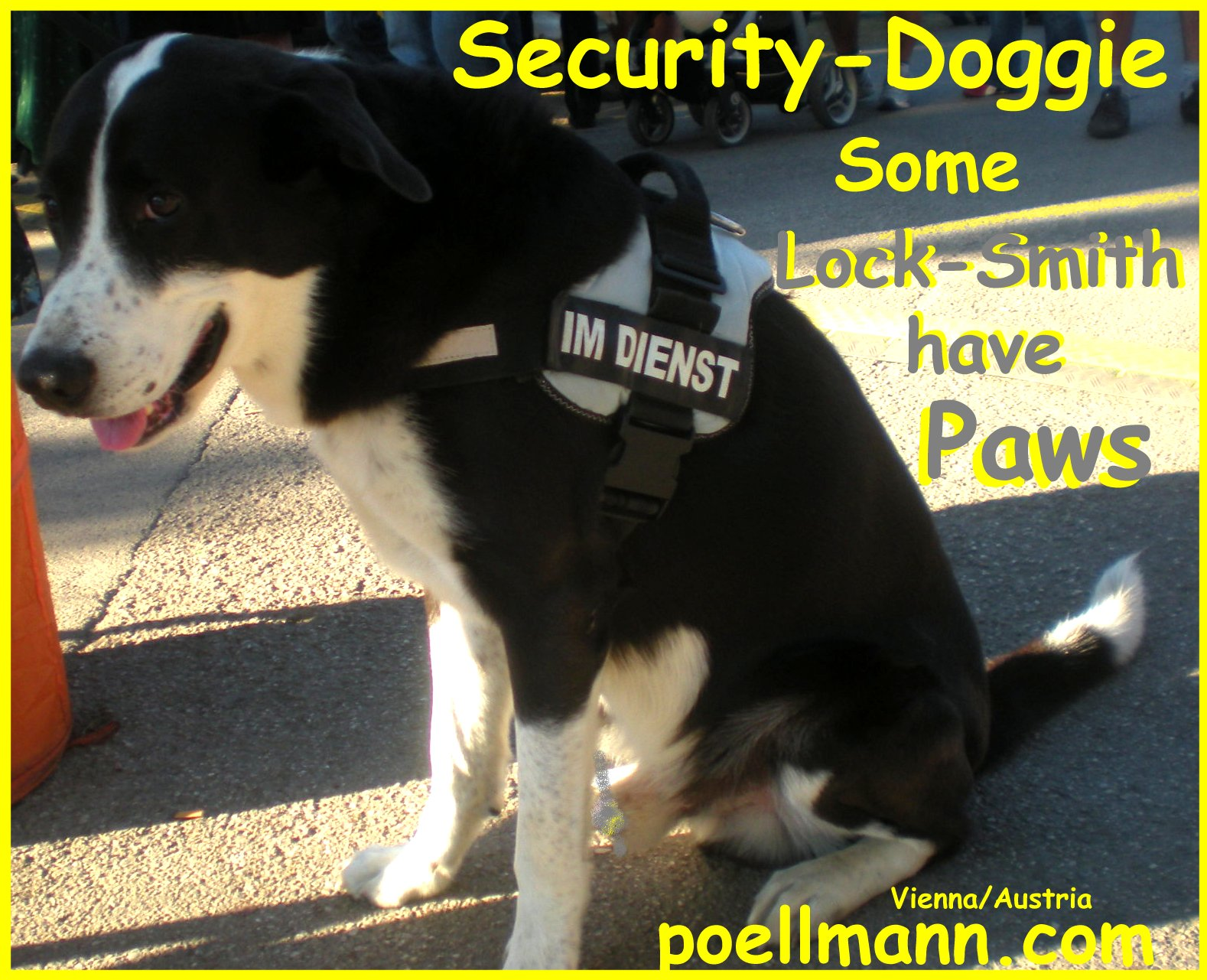 Security Dog